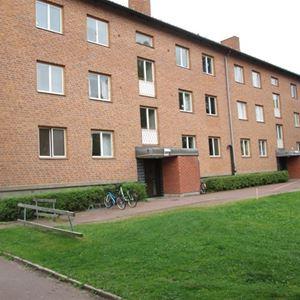 Vasaloppet Sommar. Privatrum M18 Vasagatan, Mora.