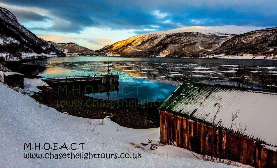 Mariannes fjord, ørn, hval og villmarkstur med profesjonell fotograf - Marianne's Heaven on Earth Aurora Chaser Tours