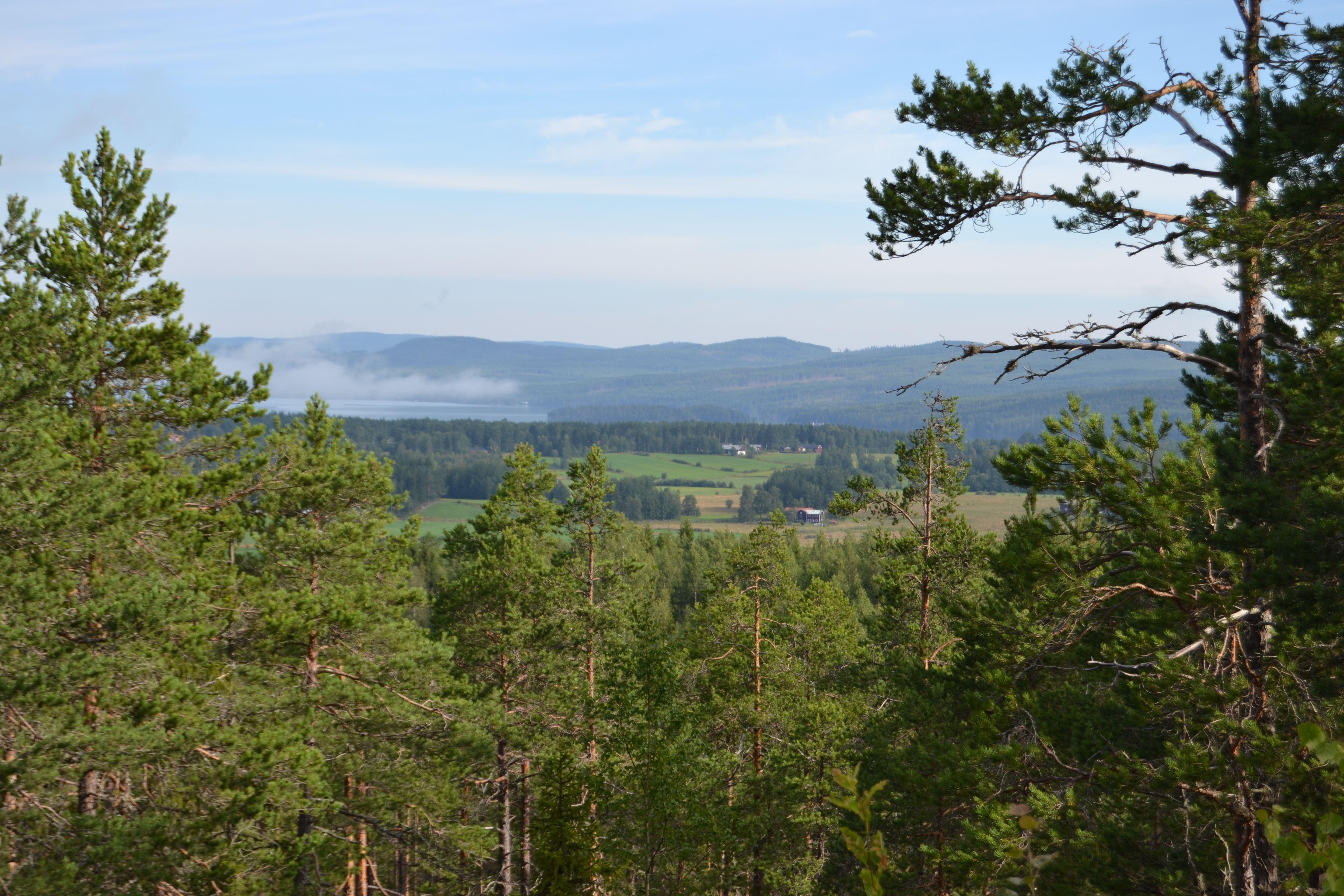 Malin Löthmyr,  © Visit Glada Hudik, Utsikt från Josefsberget