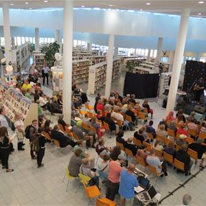 Heidi Ikonen, Mariehamns stadsbibliotek