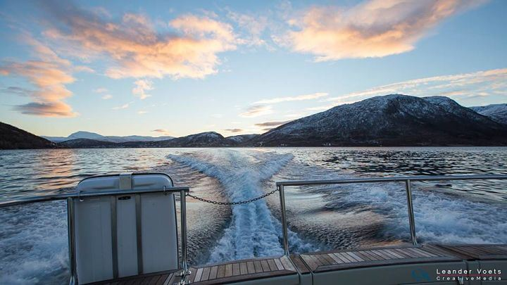 The ultimate fjord cruise – Arctic Explorers