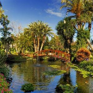 Oriental trädgård på Hotell Botanico & The Oriental Spa Garden, Puerto de la Cruz Teneriffa