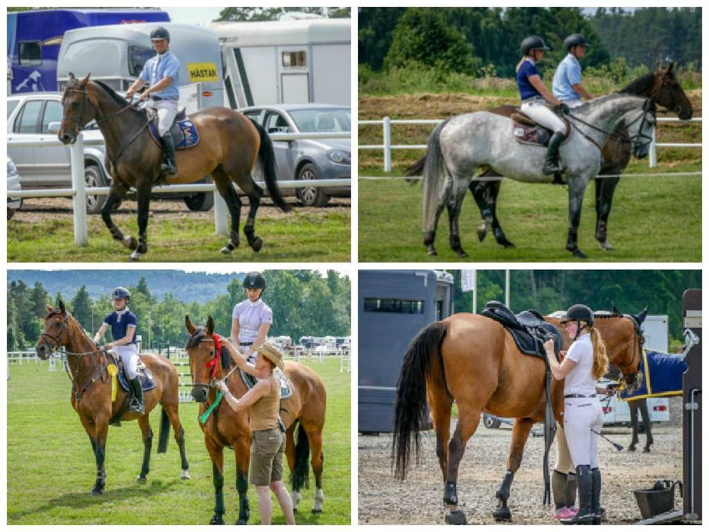 Båstad Horse Show