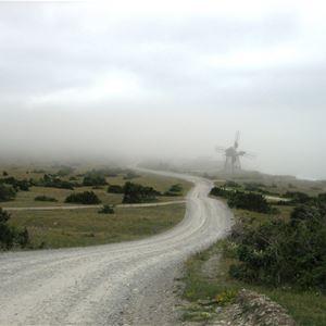Matvandring - Stenkusten i Skumtimmens landskap