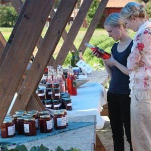 Rhubarb festival at Kvarnå Garden (copy)