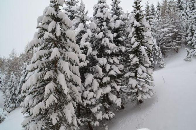 Studio 3 Pers skis aux pieds / BOEDETTE D 519