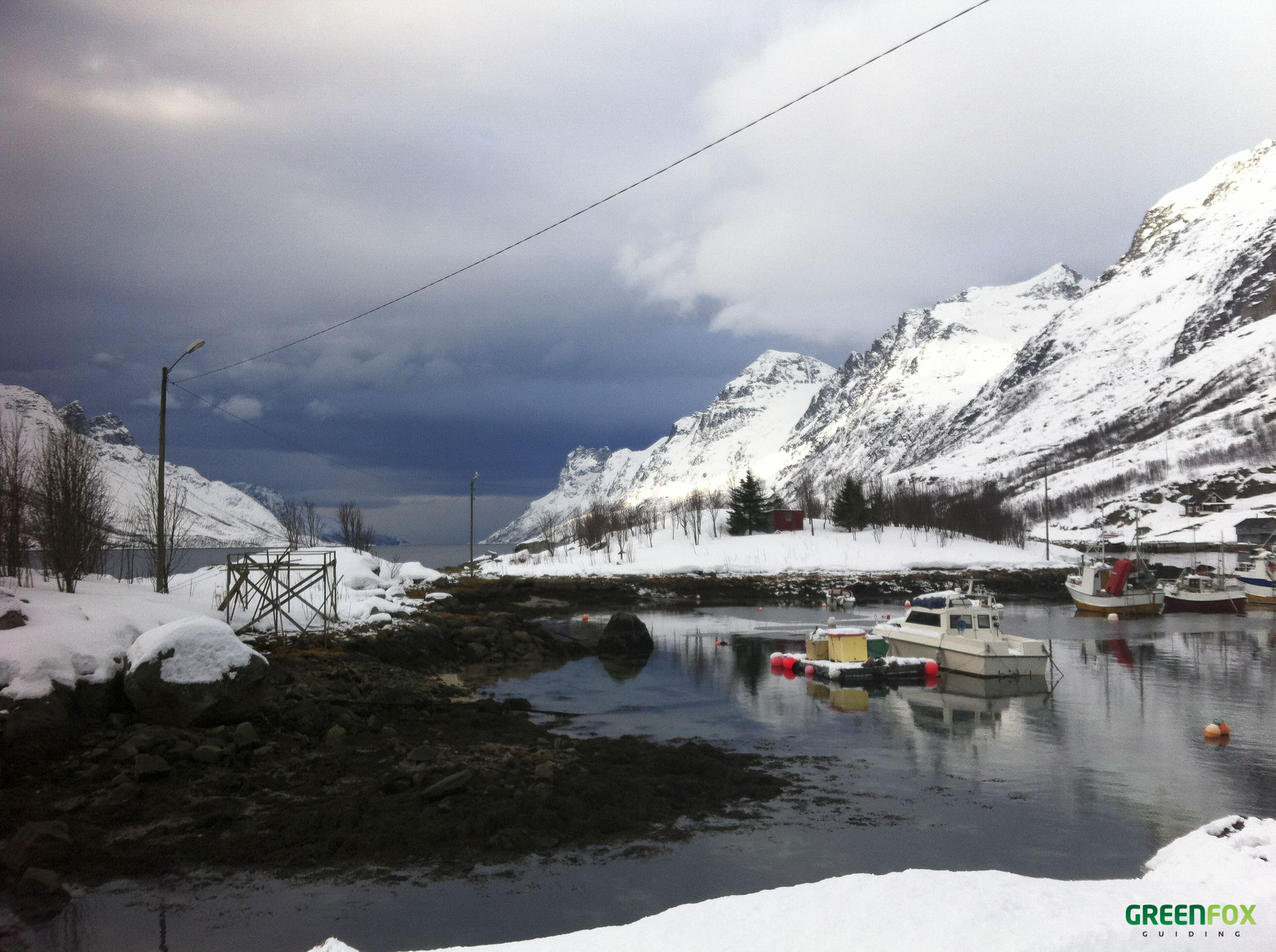 Fjord tour by car – Green Fox Guiding