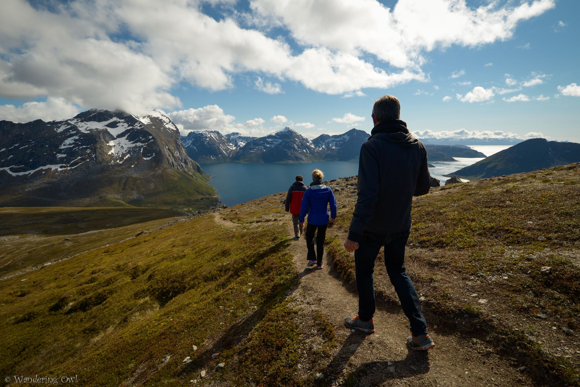 Take a Walk on the Wild Side – a hike on Kvaløya – Summer - Wandering Owl