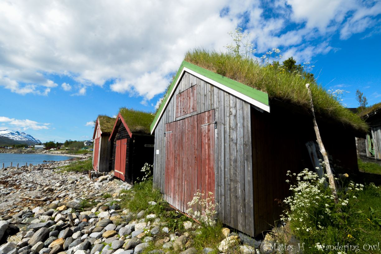 Arctic Landscapes - a sightseeing tour to Kvaløya– Wandering Owl