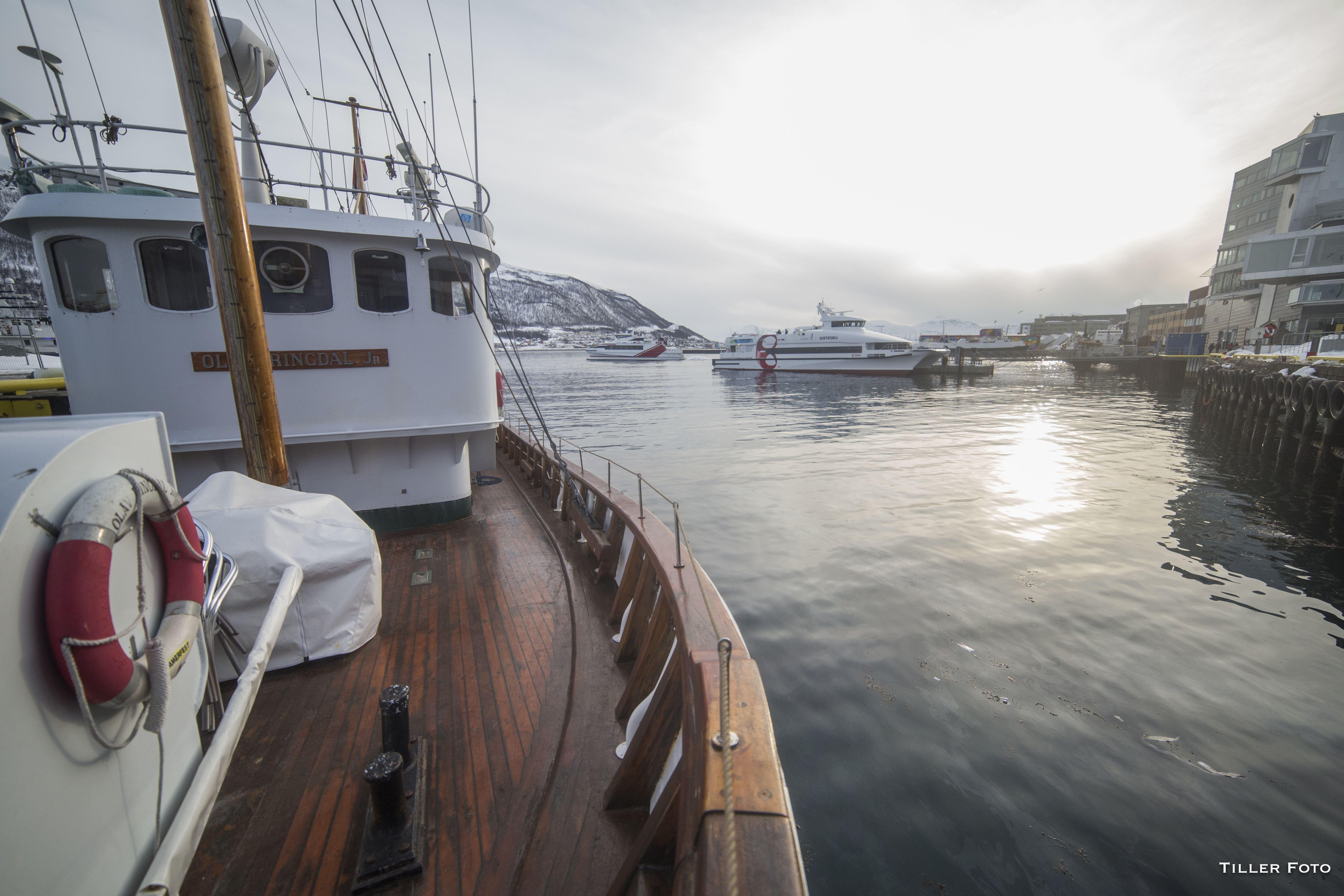 Lokal fisketur med verdens minste cruise båt – Northern Sea Adventure