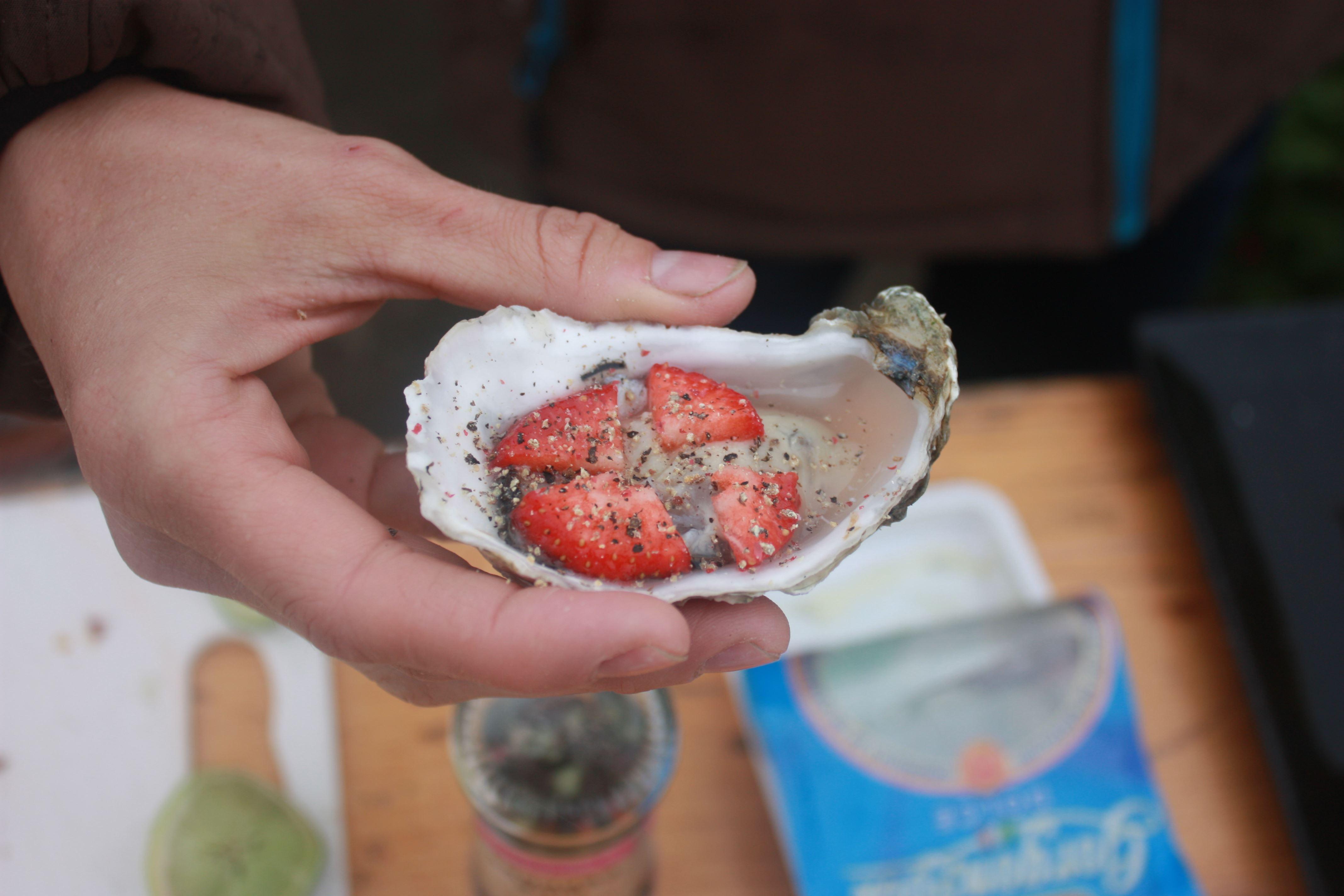 Club Fanø Austernsafari, ein fantastisches, gastronomisches Erlebnis im Nationalpark Wattenmeer.