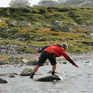 Steffen Kjønnås, Hytteutleie i Skjåk med Skjåk Almenning