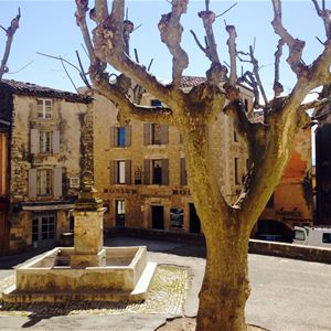 Fontaine de Vaucluse/Gordes/Roussillon (Half day lavender tour) - Provence Travel