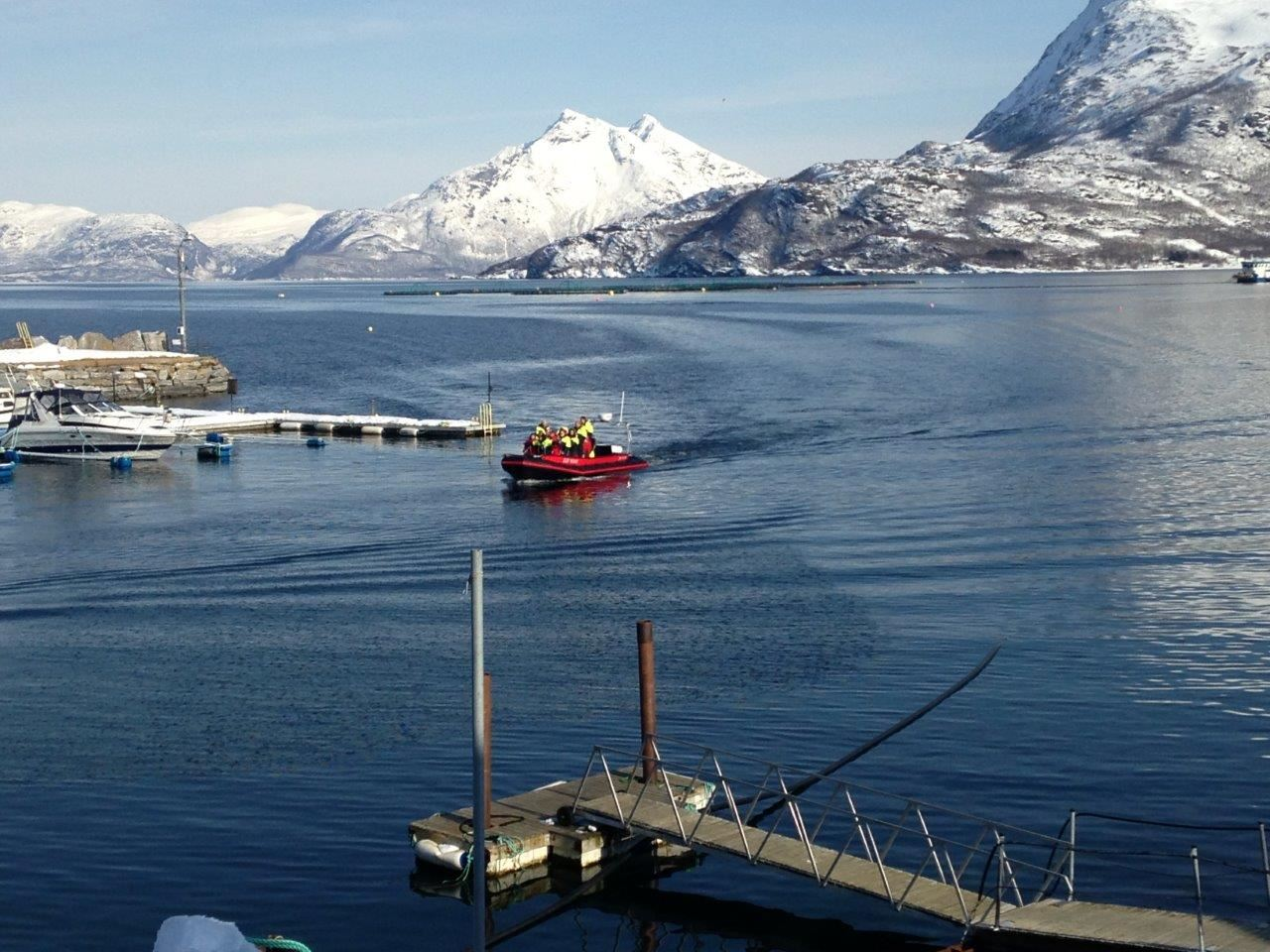 The Sound of Salmon day tour - Tromsø Budget Tours