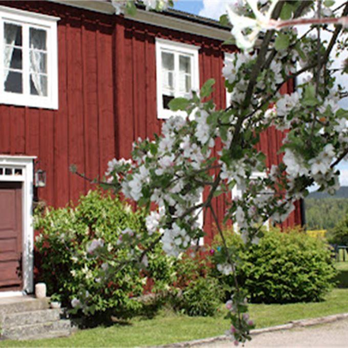 Hälsingegårdsdagarna på Jon-Lars i Flor