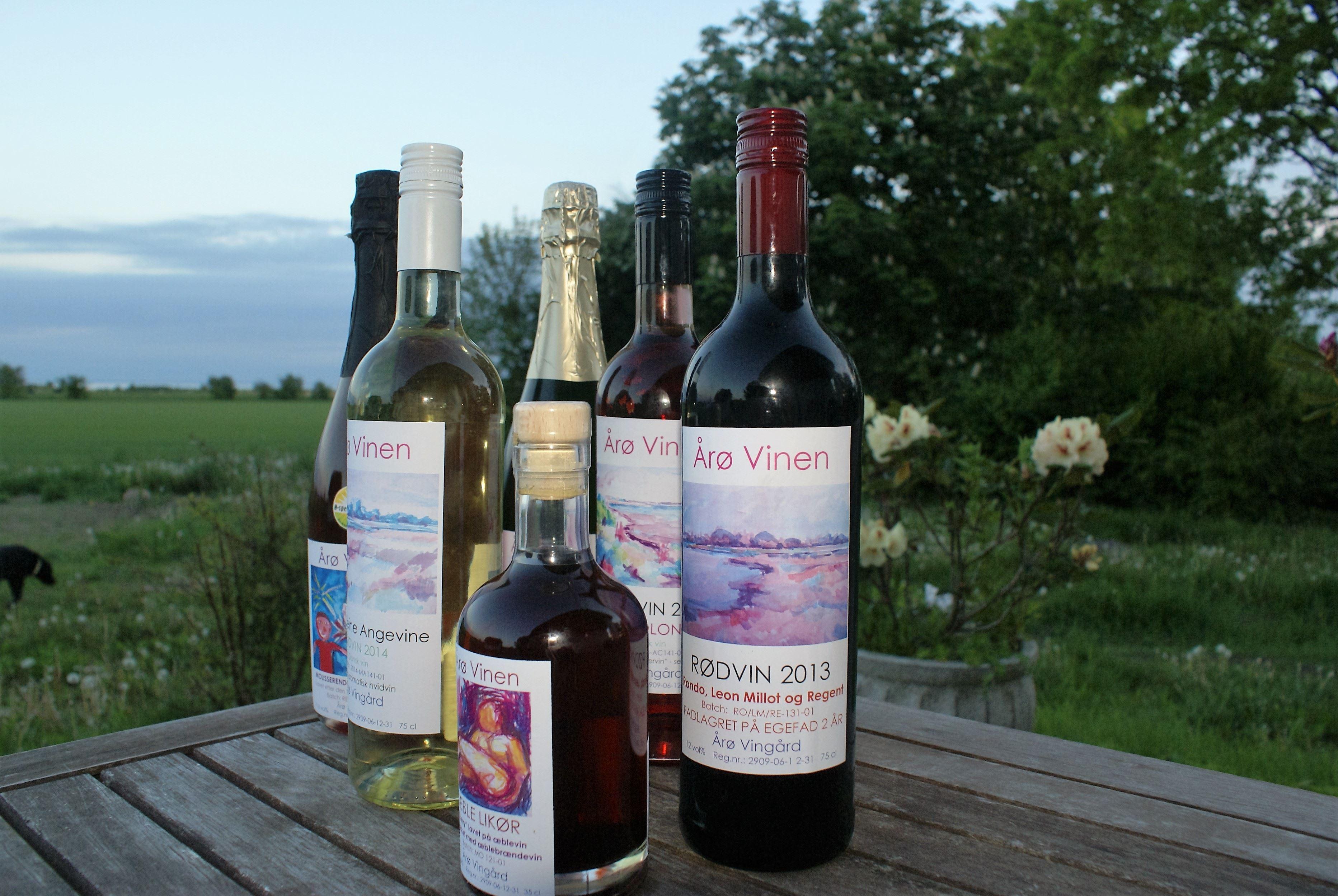 Weinverkostung auf Årø Weingut