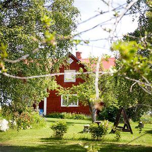 Foto: Rönngården,  © Copy: Visit Östersund, Rönngården