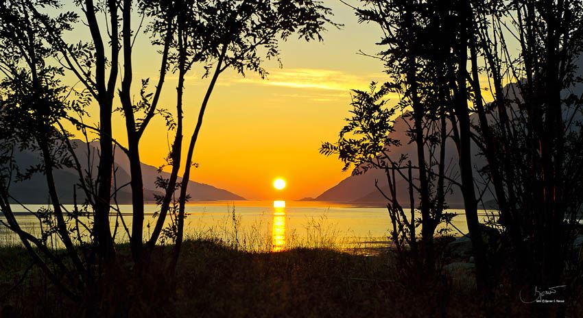 Midnight Sun Coast Landscapes and Campfire - The Green Adventure