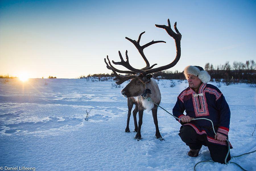 Lapland sami culture and reindeer sledding – Aurora Alps