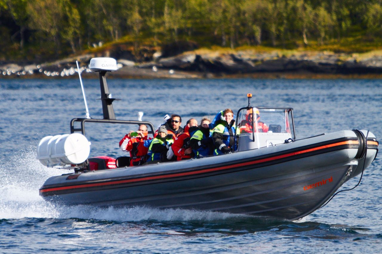 3 timers RIB-båt Safari til vakre Hella – Green Gold of Norway