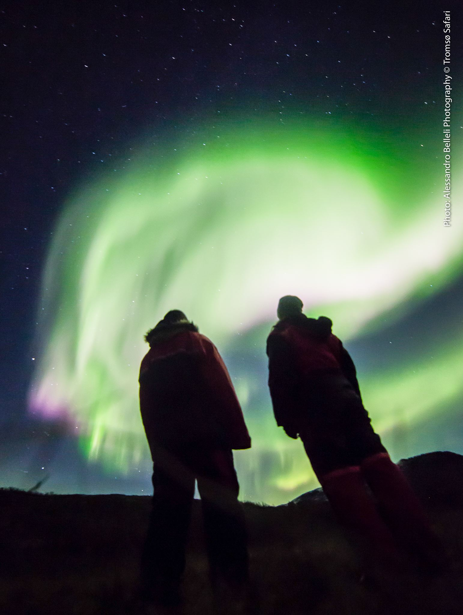 Private Northern Lights Safari (max. 3 people) - Tromsø Safari