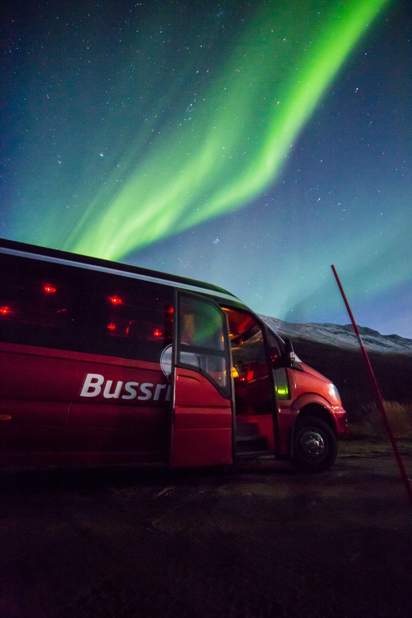 Nordlysbussen – Tromsø Safari