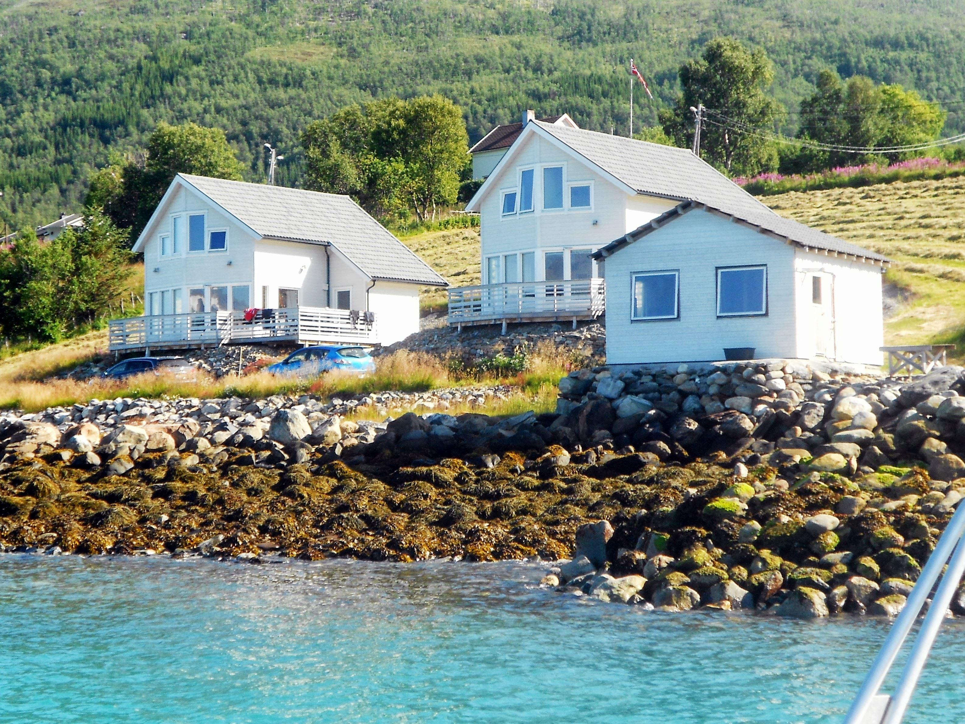 Lyngen Fjordbuer