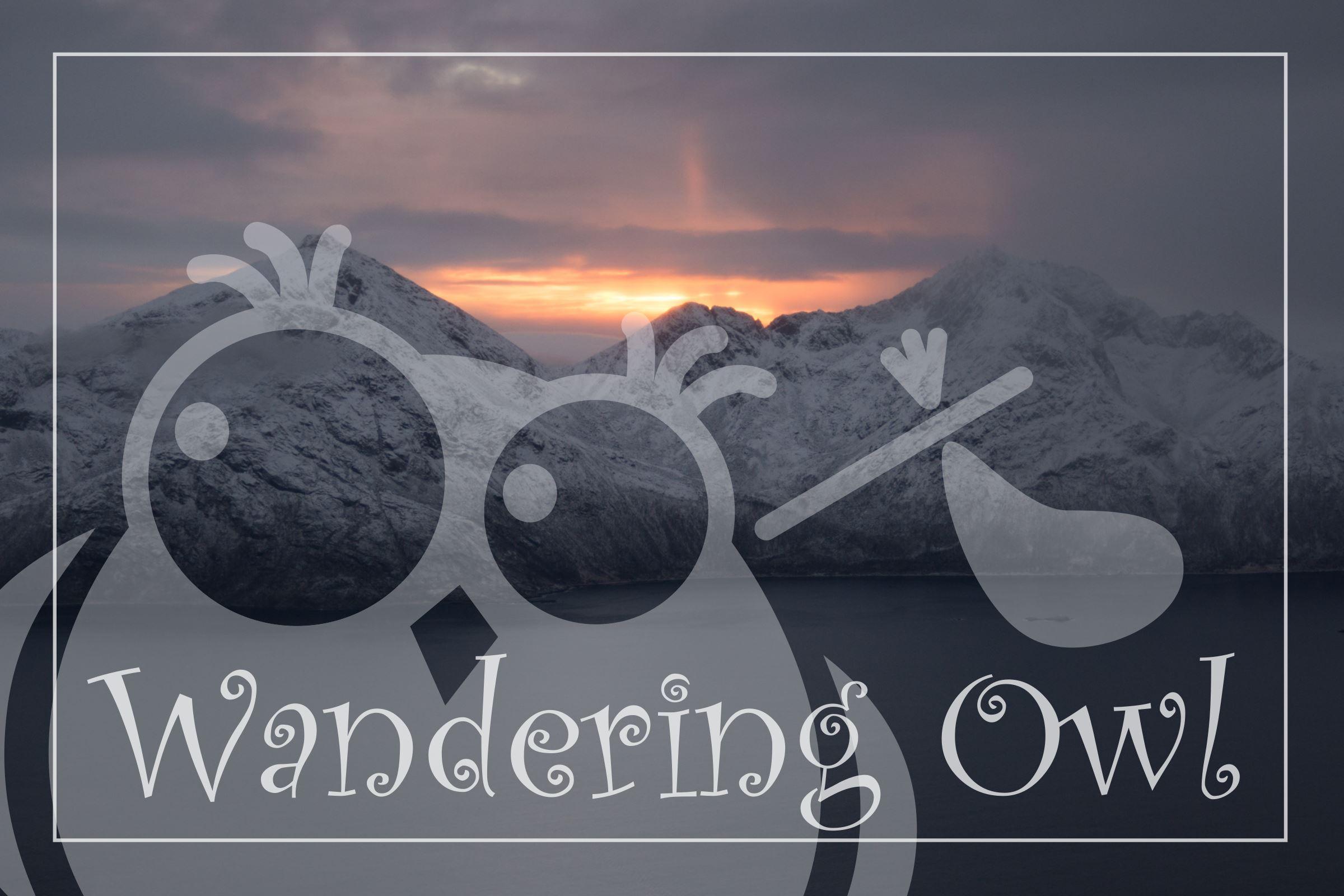 Arktiske Landskap – vinter - en tur langs de vakreste fjordene – Wandering Owl