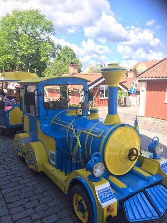 Guidad stadsrundtur med Lysses tåg
