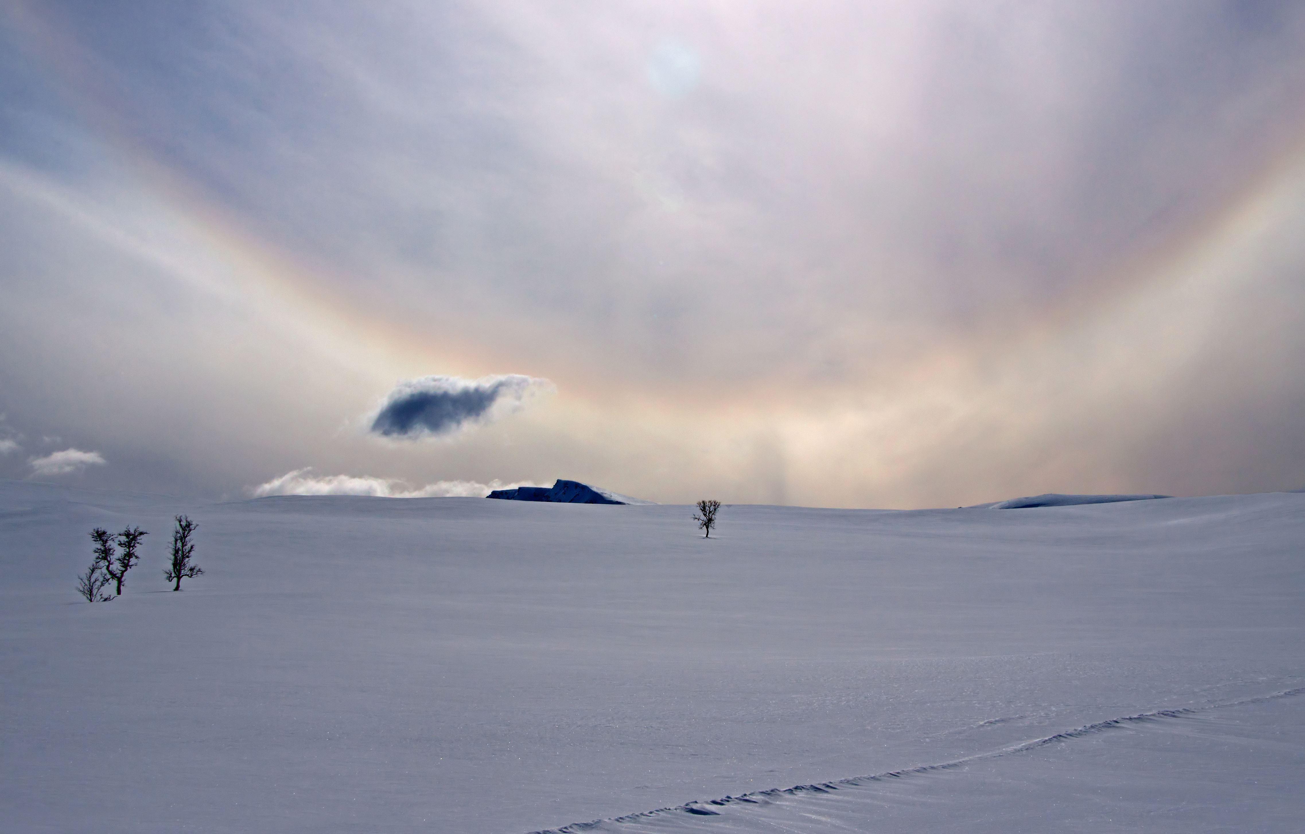 Trugetur på snødekt landskap – Karl Ivar's Guided Tours