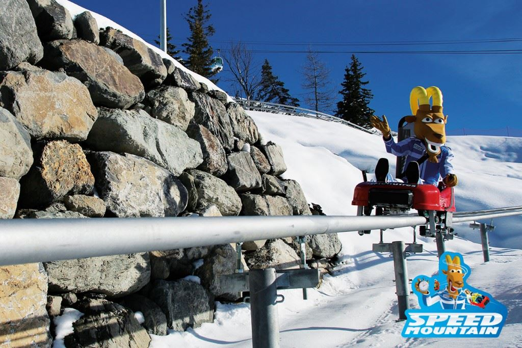 Luge Speed Mountain - Les Menuires
