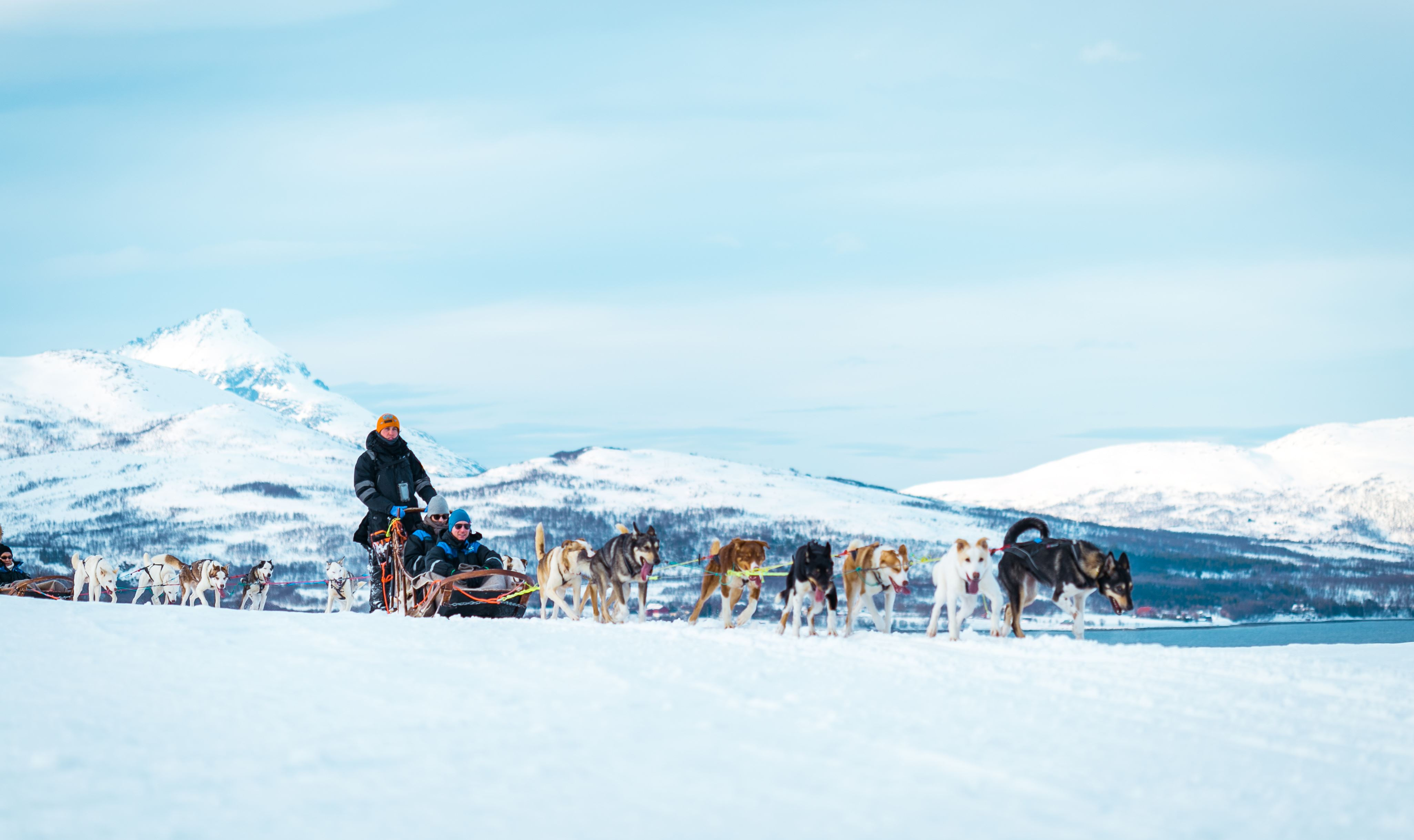 Hundekjøring – Tromsø Villmarkssenter