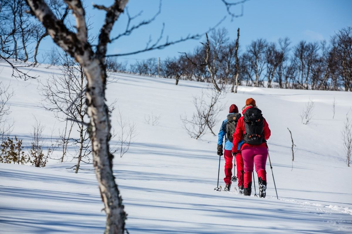 Jämtland - Vålådalsfyrkanten i vinter