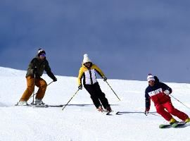 Group Ski lessons 6 days