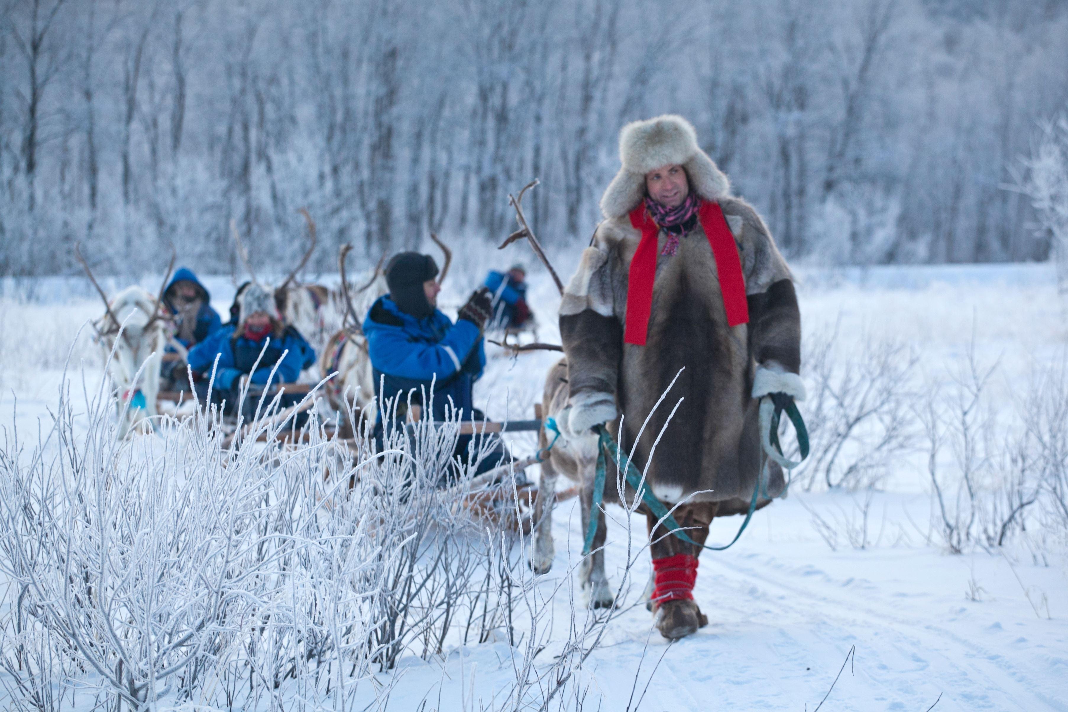 Reindeer Sleeding - Daytime - Lyngsfjord Adventure