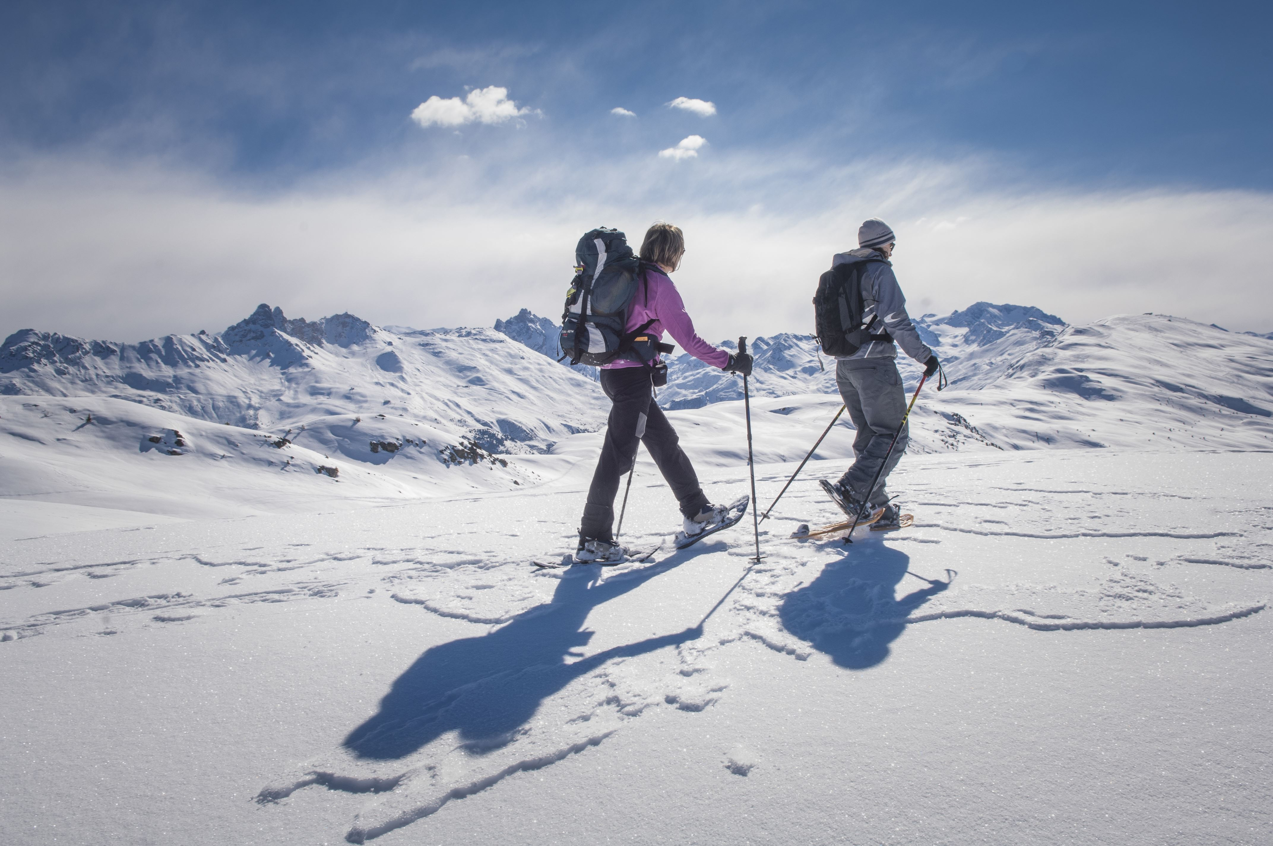 Snowshoes outings, half-day (afternoon)