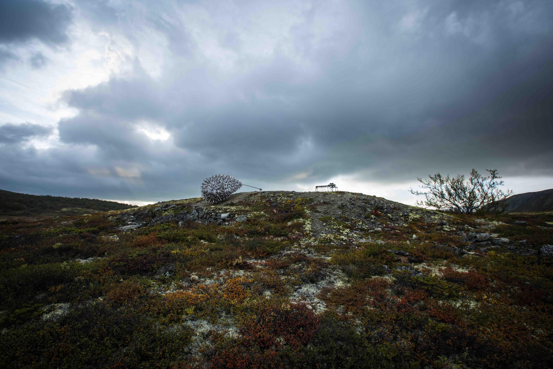 André Løyning,  © Skulpturstopp , Skulpturstopp - Dovre