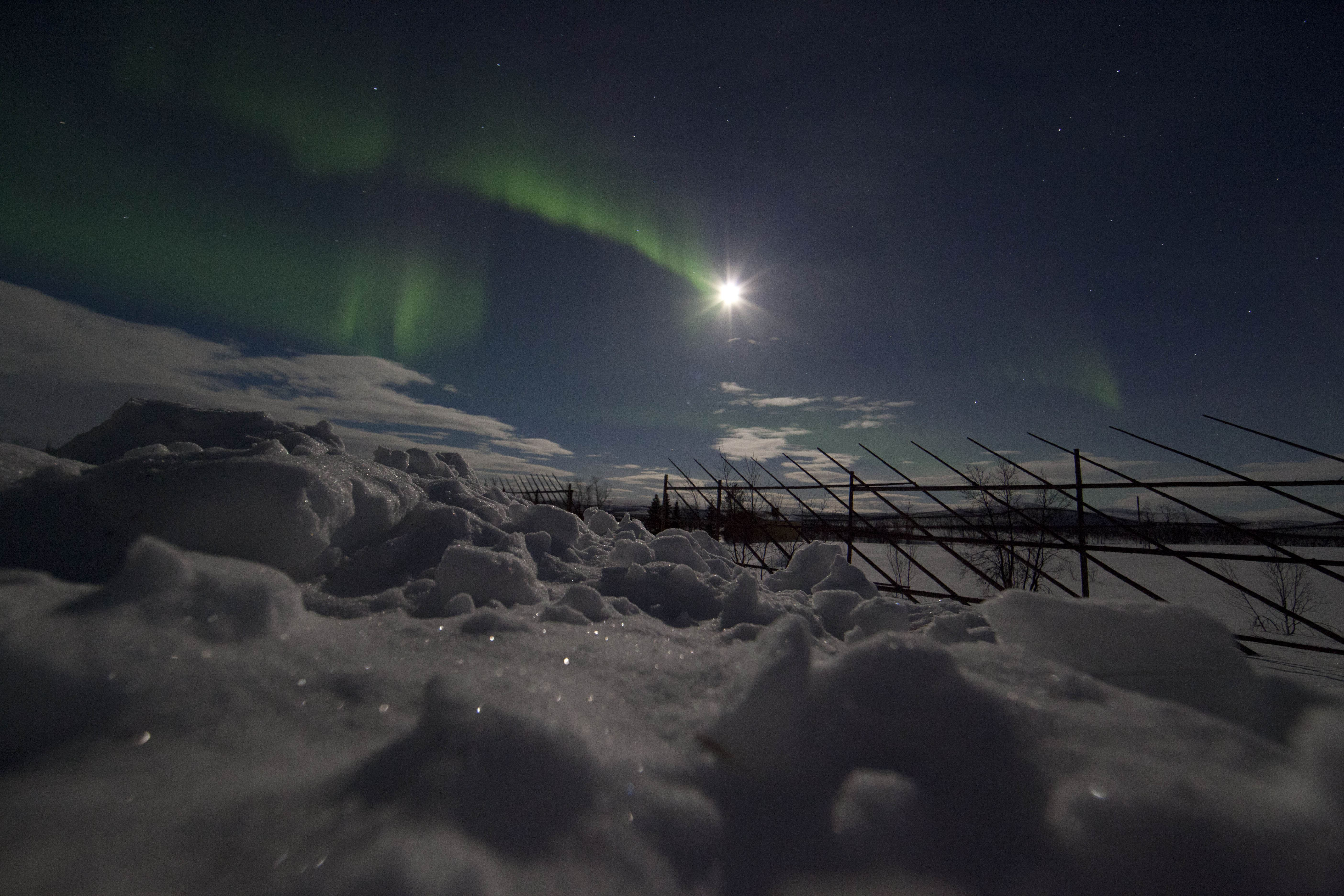 Northern Lights with Peter– Roy Sætre Arctic Trip