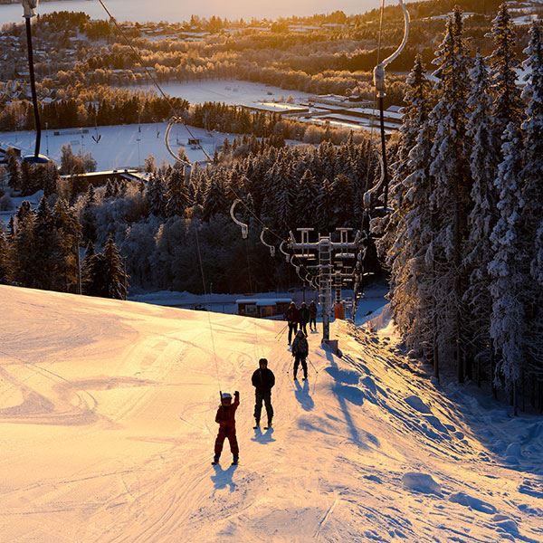 Alpin skidåkning i Ladängen