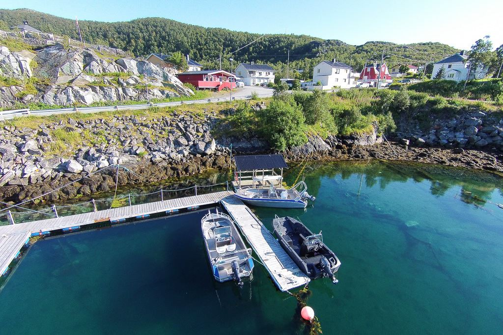 Kveitefiske i Skrolsvik