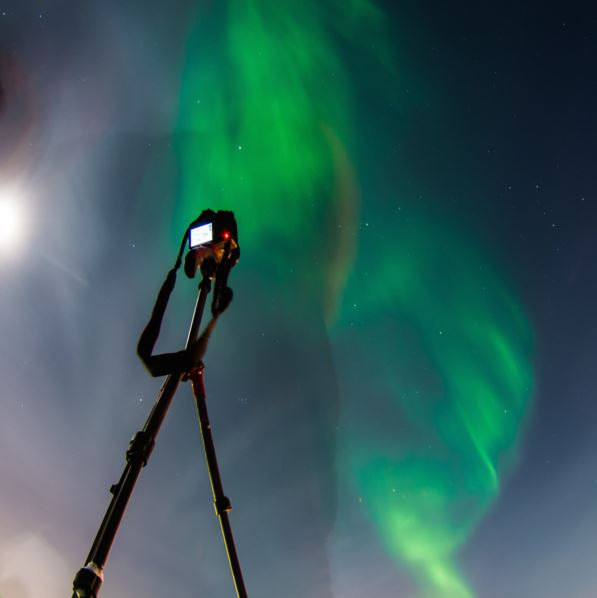 Amazing Northern Lights Cruise - Wild Seas
