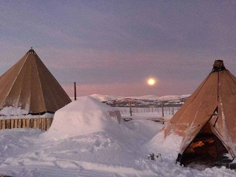Reinsdyrcamp Middag med Nordlyssjanser - Tromsø Arctic Reindeer Experience