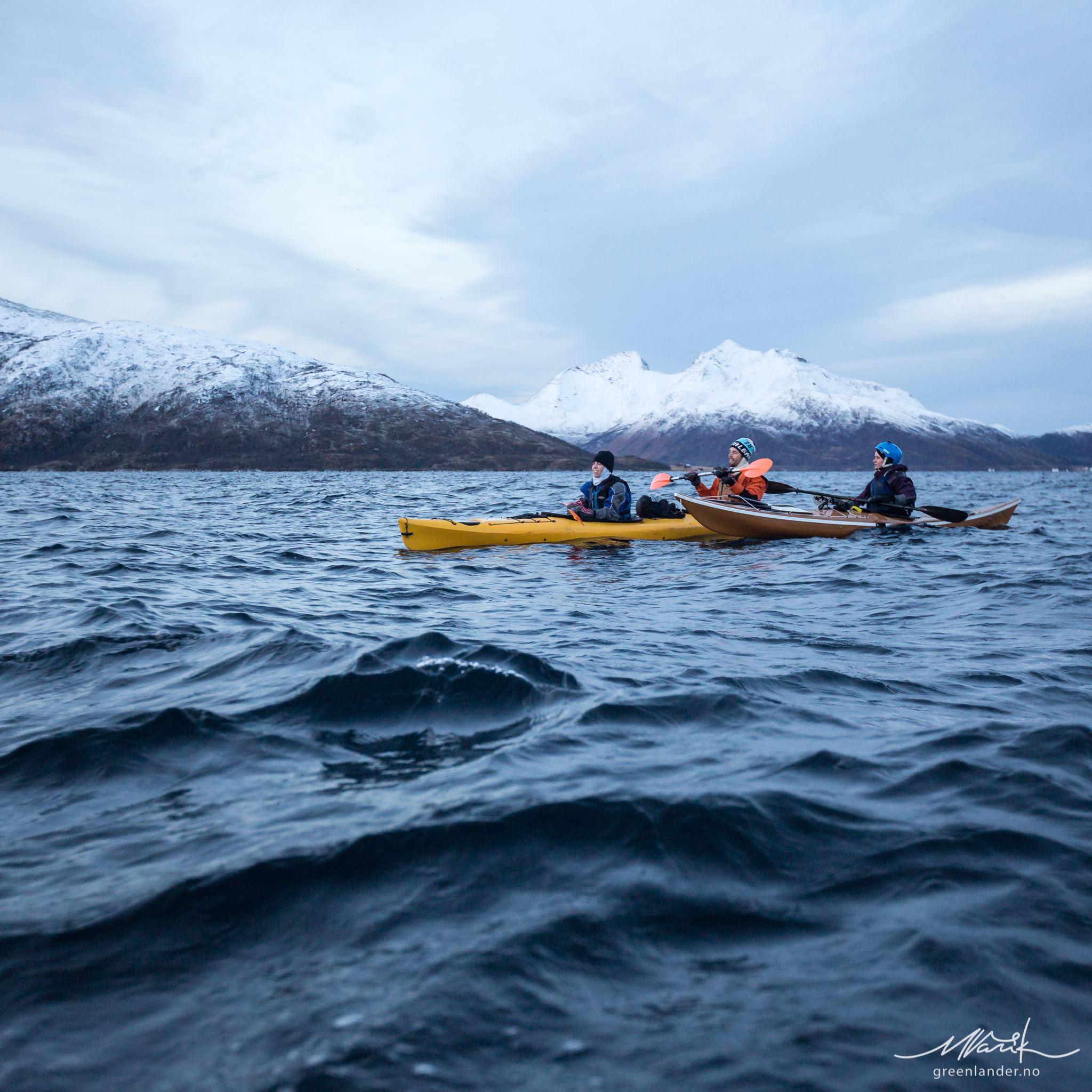 Vinter-kajakk med hvaler, BCU sertifisert havkajakkinstruktører og trygge tandemkajakker - Greenlander