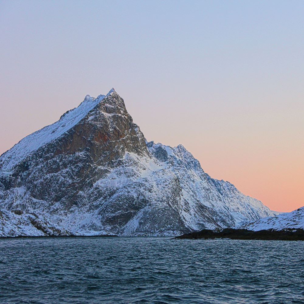 Winter fjord cruise - Explore the Arctic