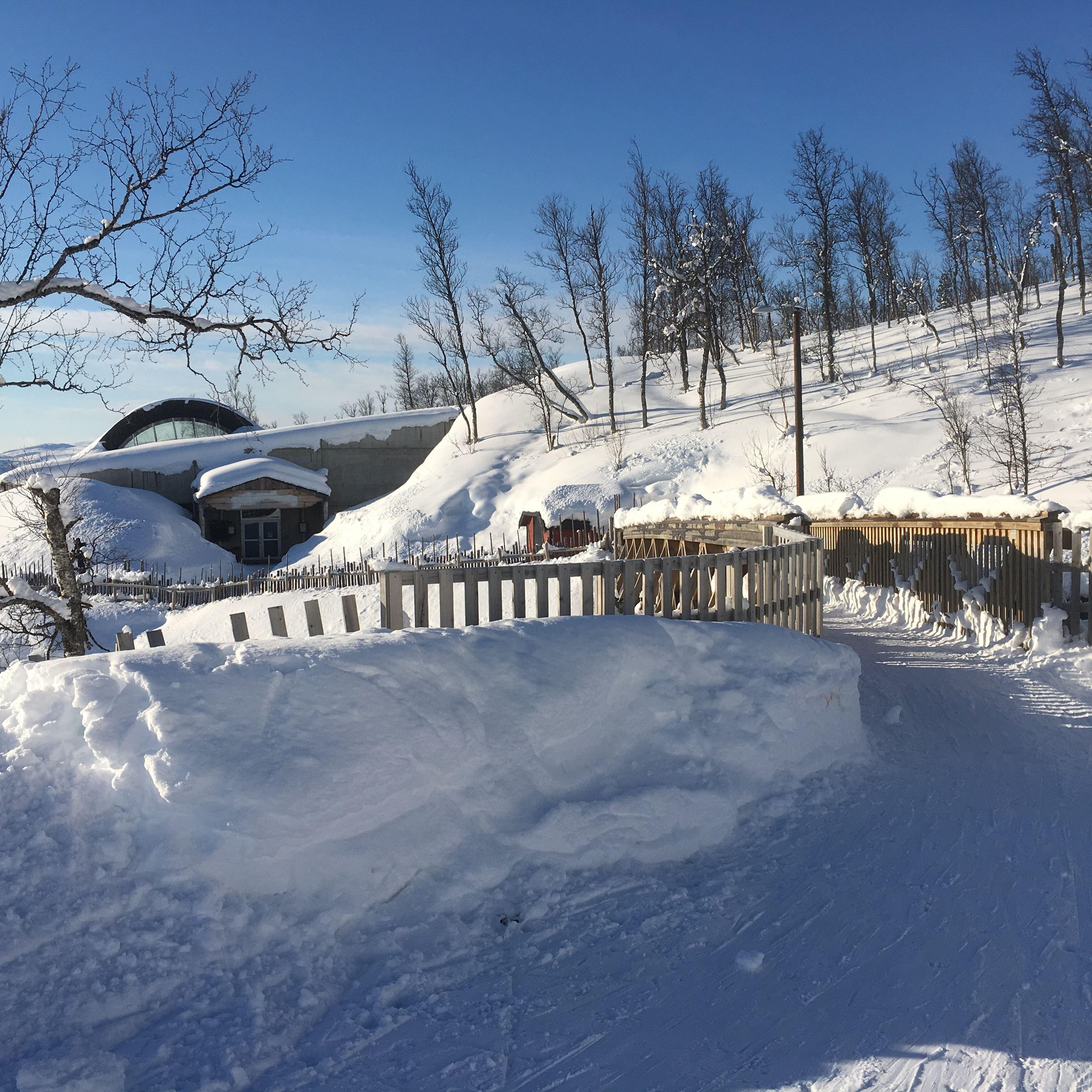 Snowman - Snowshoes with guide - Destination Snowman