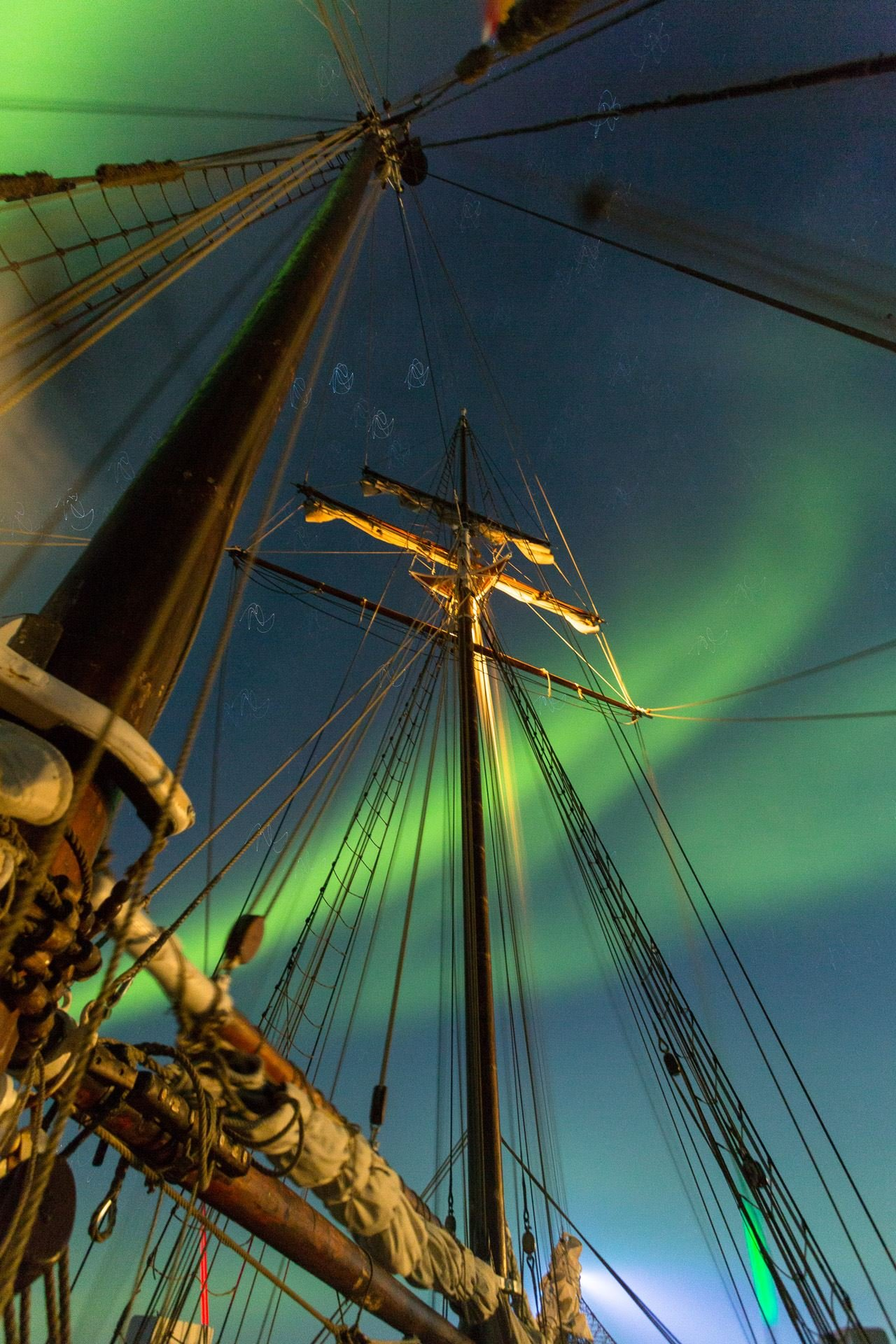Whale Exploring and Northern Lights on Traditional Schooner – North Sailing Norway