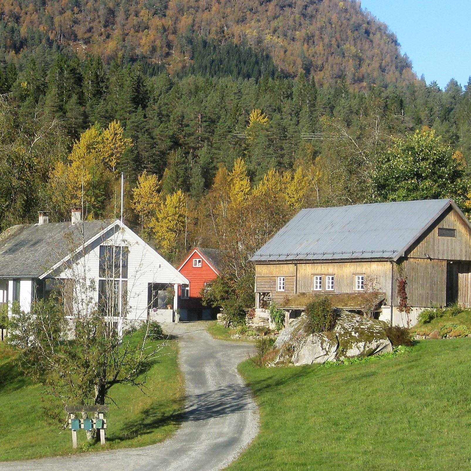 Fjordamattunet - kurs og oppleving