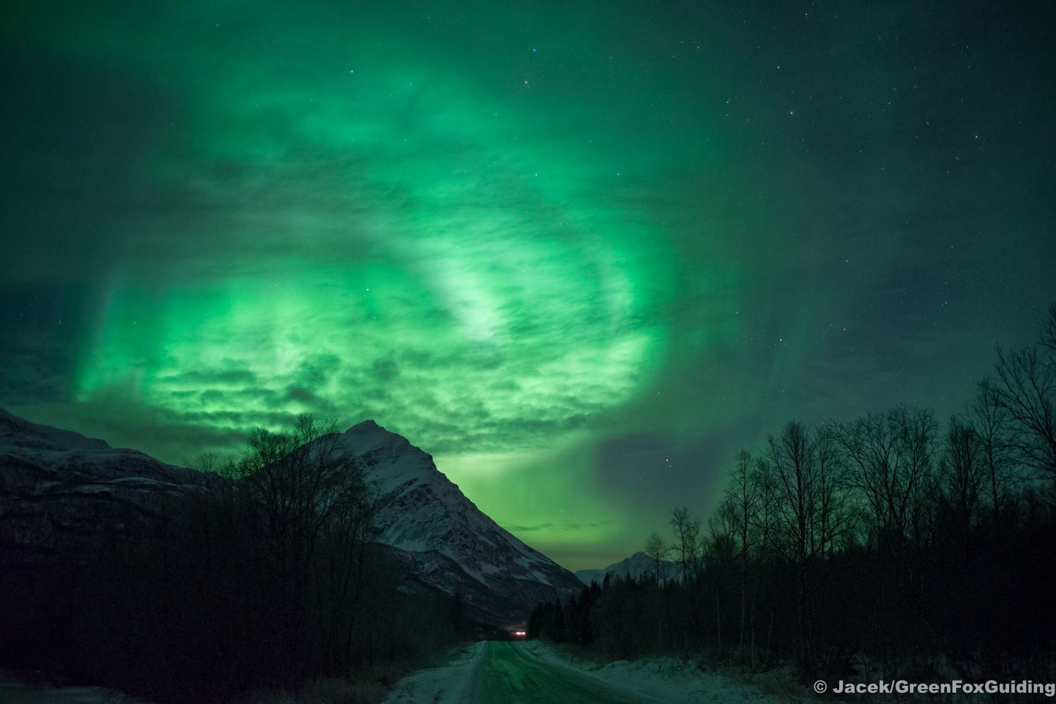 Northern Lights Chase when the Sky Becomes Magic – Green Fox Guiding