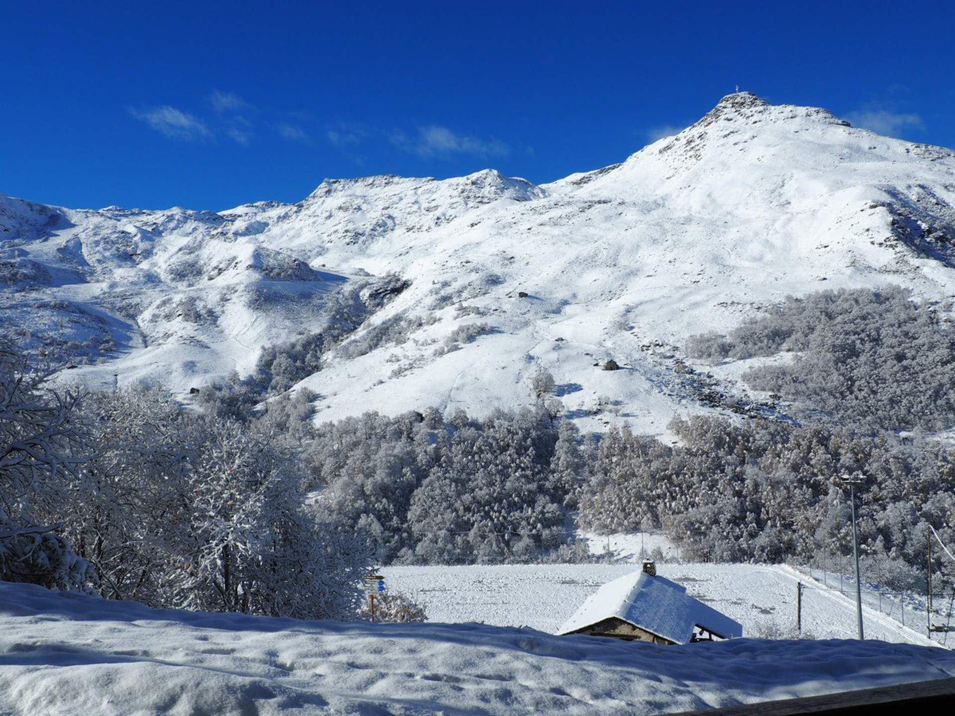 2 Pièces cabine 6 Pers skis aux pieds / LES BALCONS D'OLYMPIE B1
