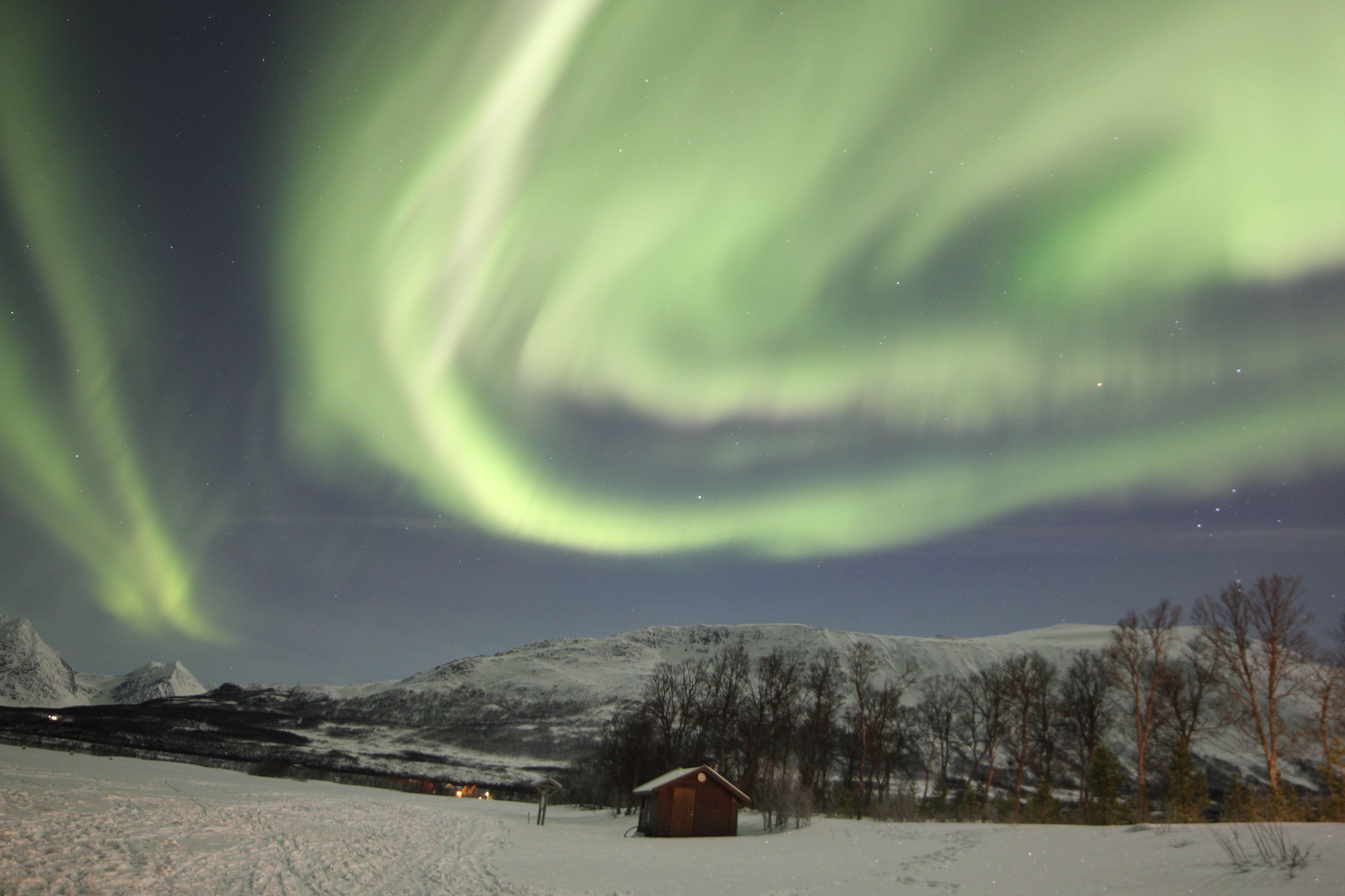 Northern Light night with Aurora Alps bus